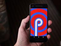 """安卓系统第九代甜品正式出炉:Android 9.0命名为""""Pie"""""""