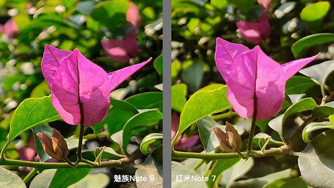 热门千元机对比:红米Note 7外观取胜,魅族Note 9拍照更好